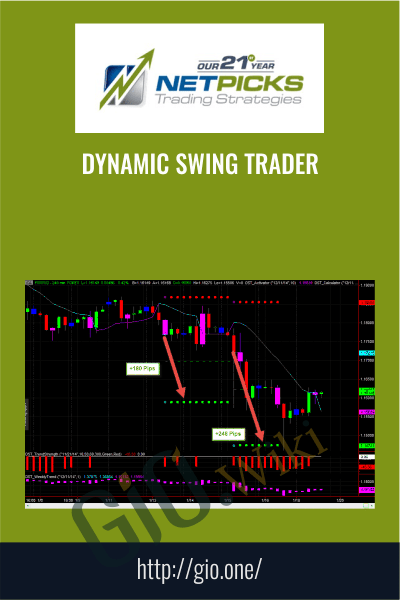 Dynamic Swing Trader - NETPICKS (Unlocked)