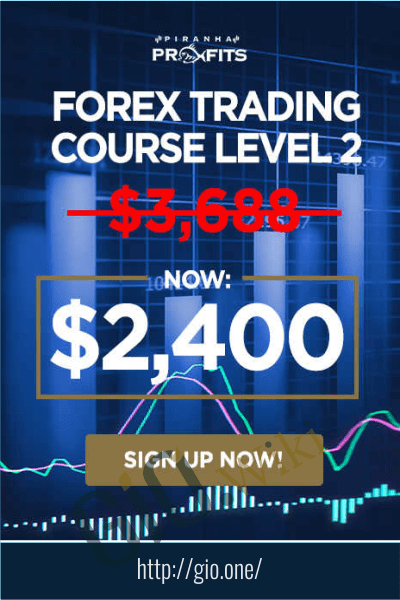 Forex Trading Course Level 2 - Pip Netter - Adam Khoo