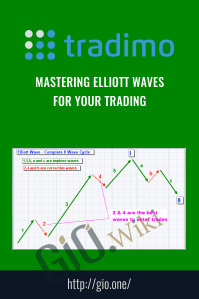 Mastering Elliott Waves for Your Trading – Tradimo