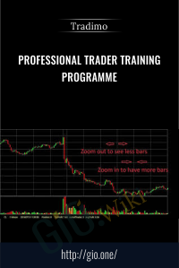 Professional Trader Training Programme  – Tradimo