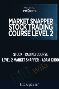Stock Trading Course Level 2 Market Snapper - Adam Khoo
