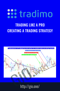 Trading Like a Pro – Creating a trading strategy – Tradimo