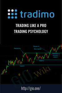 Trading Like a Pro – Trading Psychology – Tradimo