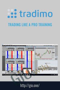 Trading Like a Pro Training – Tradimo