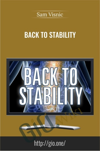 Back To Stability - Sam Visnic