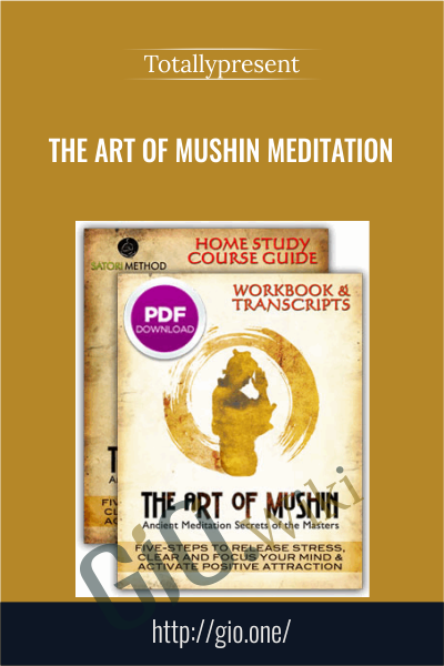 The Art of Mushin Meditation Course - Totallypresent