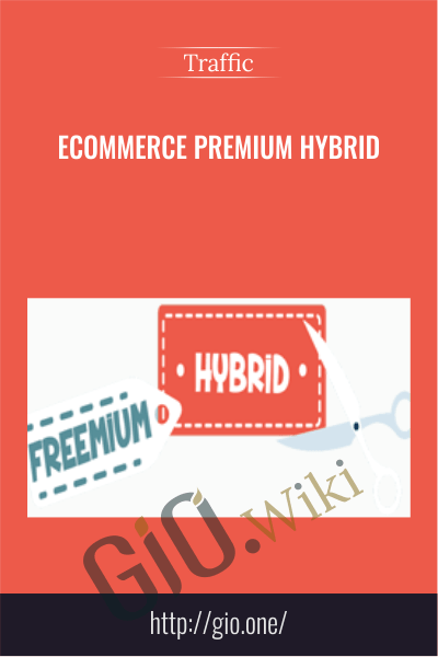 Ecommerce Premium Hybrid - Traffic