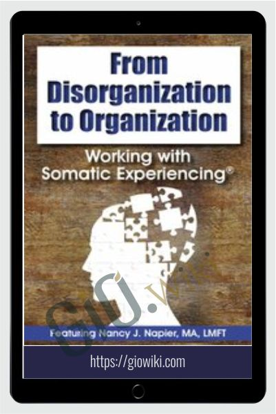 From Disorganization to Organization: Working with Somatic Experiencing® - Nancy Napier