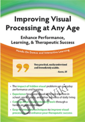 Improving Visual Processing at Any Age: Enhance Performance, Learning, & Therapeutic Success - Cathy Stern