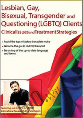 Lesbian, Gay, Bisexual, Transgender and Questioning (LGBTQ) Clients: Clinical Issues and Treatment Strategies - Joe Kort