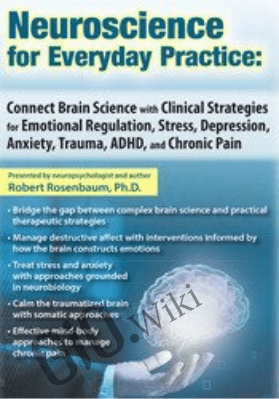 Neuroscience for Everyday Practice: Connect Brain Science with Clinical Strategies for Emotional Regulation, Stress, Depression, Anxiety, Trauma, ADHD, and Chronic Pain - Robert Rosenbaum