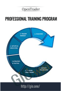 Professional Training Program - OpenTrader