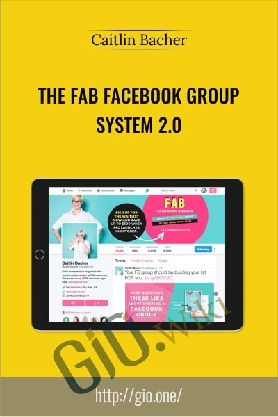 The Fab Facebook Group System 2.0 - Caitlin Bacher