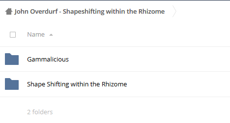 Shapeshifting within the Rhizome – John Overdurf