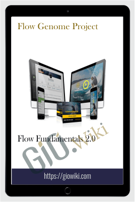 Flow Fundamentals 2.0 – Flow Genome Project
