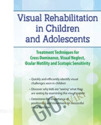 Visual Rehabilitation in Children and Adolescents: Treatment Techniques for Cross Dominance, Visual Neglect, Ocular Motility and Scotopic Sensitivity - Scott Berglund